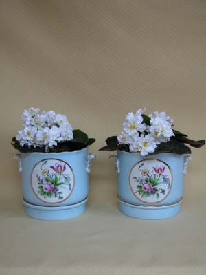 Pair Early 20th Century Cachepot